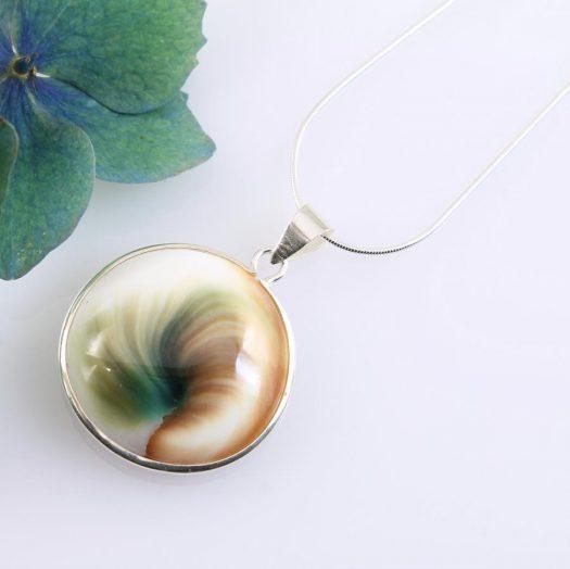 Shiva Eye Shell N-0174-c