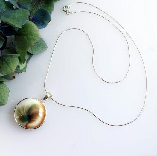 Shiva Eye Shell N-0174-i