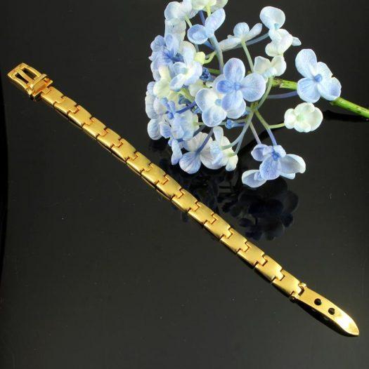 Gold Buckle Bracelet B-0123-e